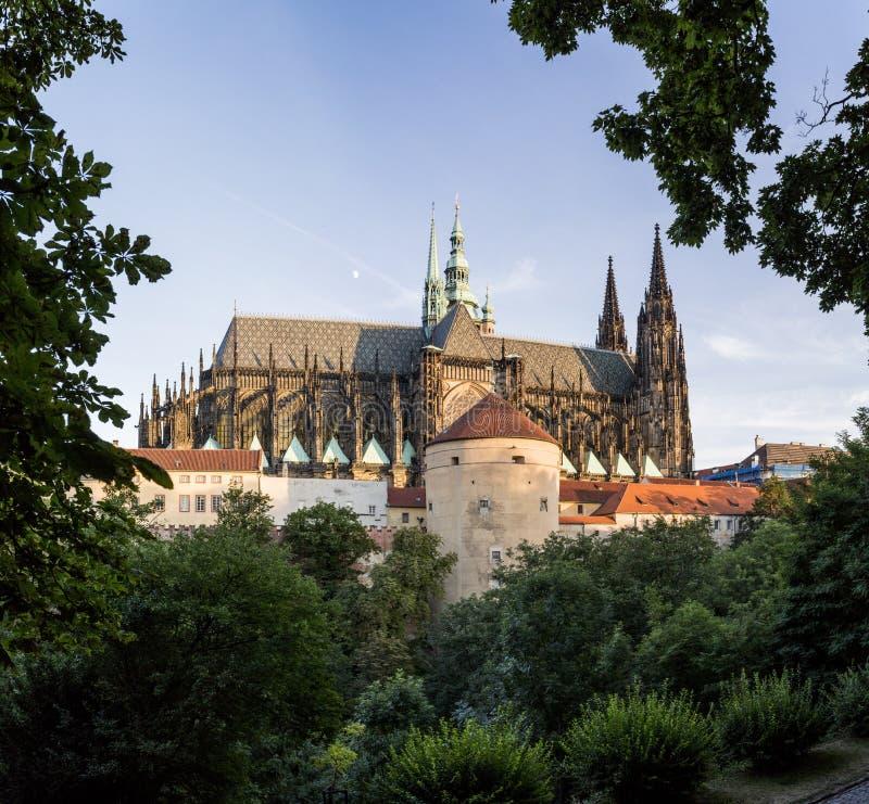 在日落,背面图,方形的comp的布拉格城堡 免版税库存图片