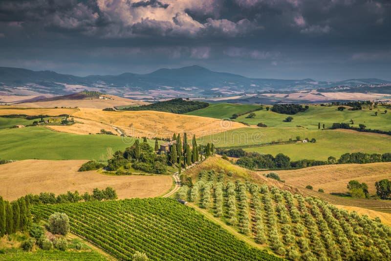 在日落, Val d& x27的风景托斯卡纳风景; Orcia,意大利 图库摄影