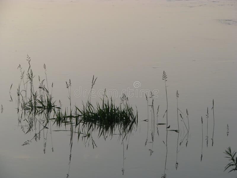 在日落以后的河 图库摄影