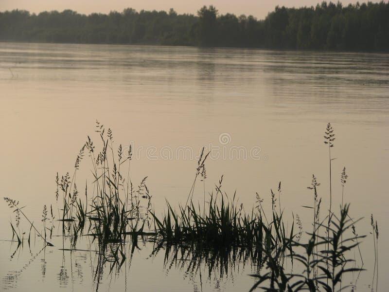 在日落以后的河 库存照片