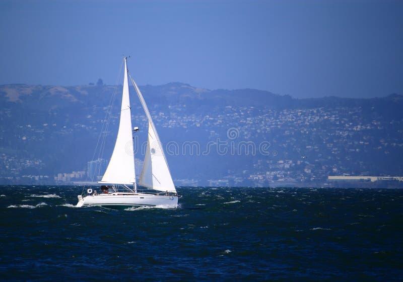 在旧金山湾的风船 图库摄影