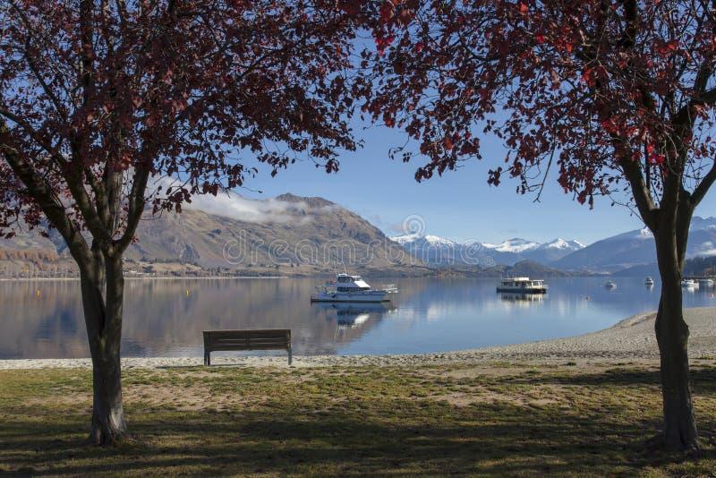 在早晨时间的美好的wanaka湖视图,新西兰 库存照片