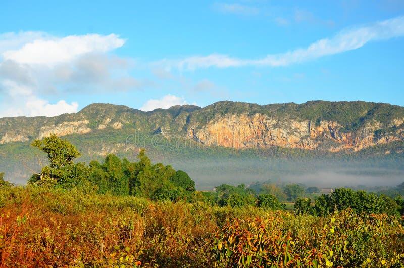 在早晨薄雾的Vinales谷,古巴 免版税图库摄影
