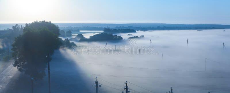 在早晨雾的输电线 免版税库存照片