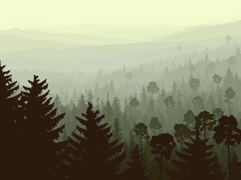 在早晨雾的通配松柏科木材。 向量例证