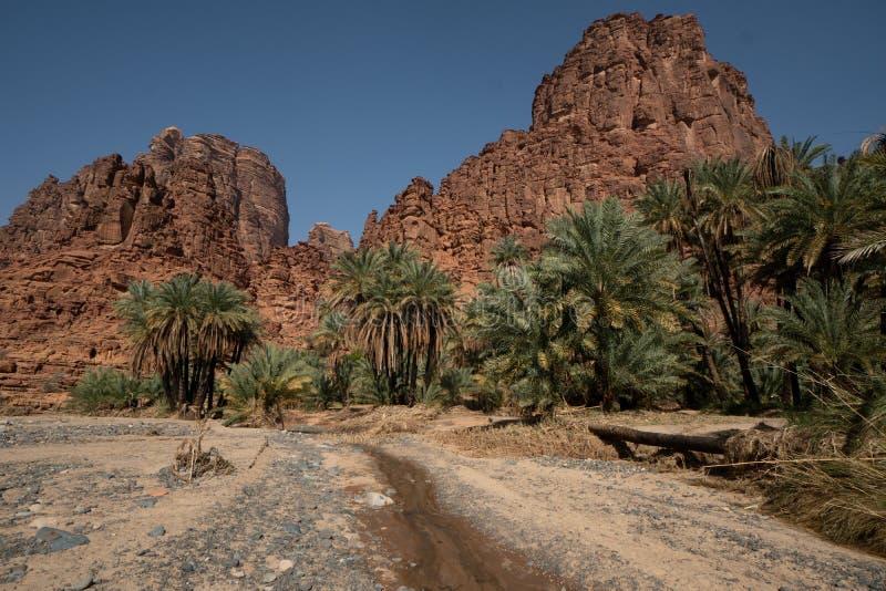 在旱谷Disah在塔布克地区,沙特阿拉伯的岩石和绿洲场面 免版税库存照片