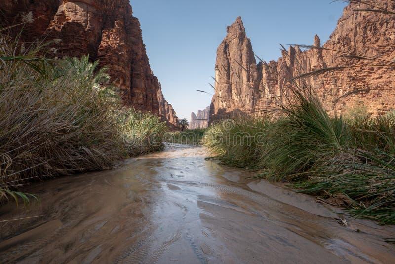 在旱谷Disah在塔布克地区,沙特阿拉伯的岩石和绿洲场面 免版税库存图片