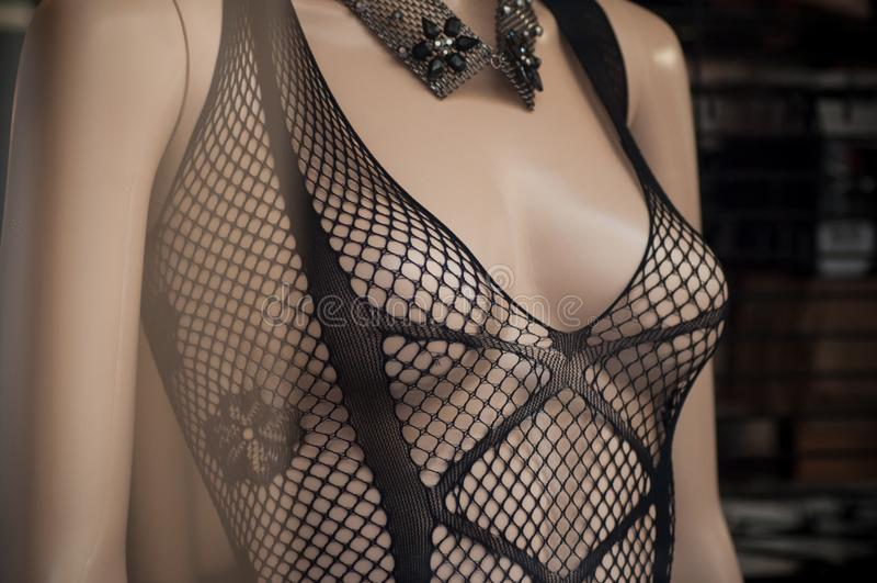 在时装模特的色情内衣在时尚商店陈列室里 库存图片