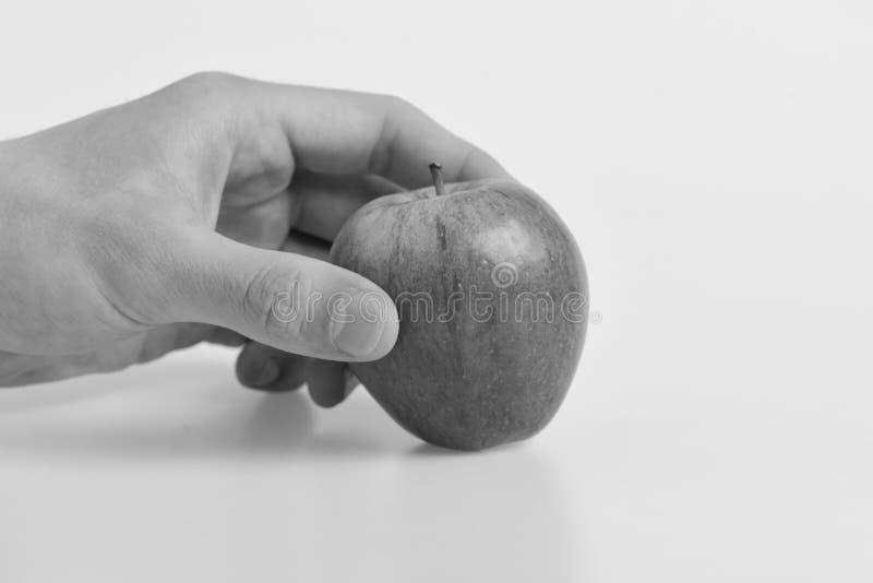 在明亮和水多的颜色的苹果计算机 食物和健康生活方式概念 男性手拿着红色苹果 免版税库存图片