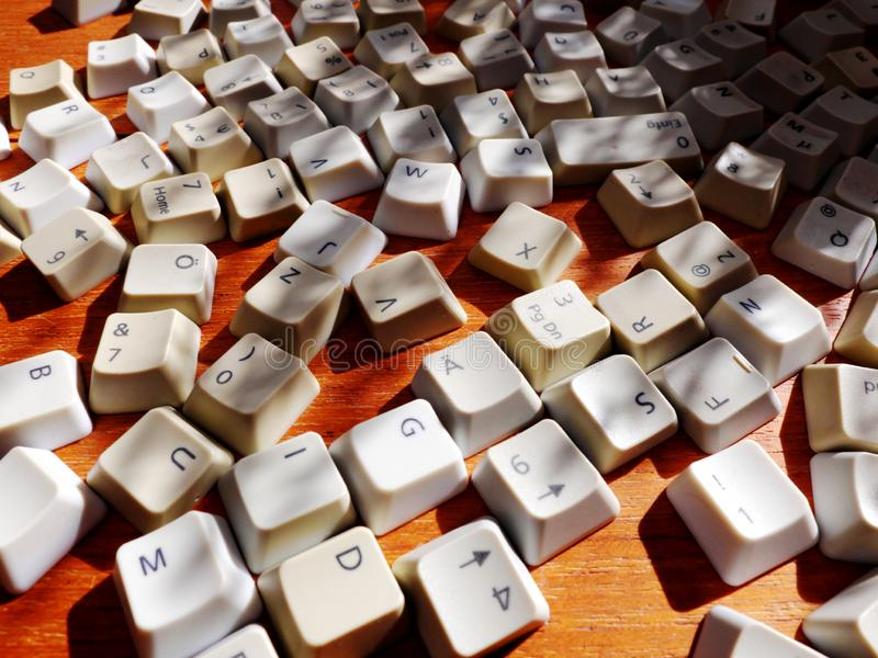 在明亮的阳光下的白色键盘钥匙特写镜头与从叶子的阴影 无特定结构的大数据的概念那 库存照片