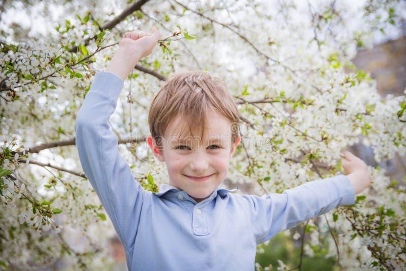 在春天开花的树中的逗人喜爱的男孩 库存图片