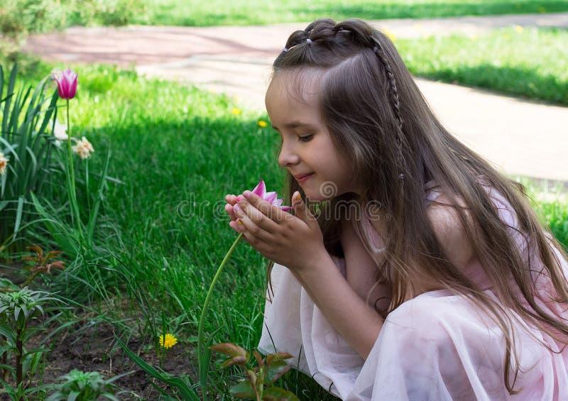 在春天的小女孩气味红色郁金香花 库存照片