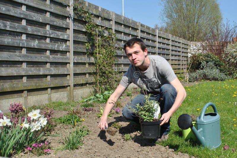 在春天的庭院工作 图库摄影