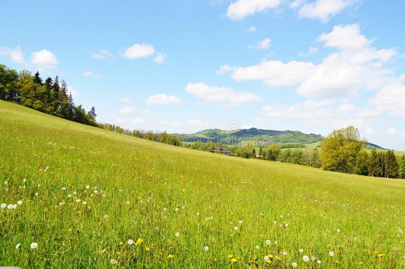 在春天的狂放的狂放的山自然 库存照片