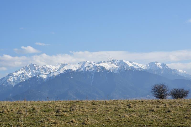 在春天的Bucegi山 Bucegi在冬天季节的山风景与盖树和山在R的雪 库存图片