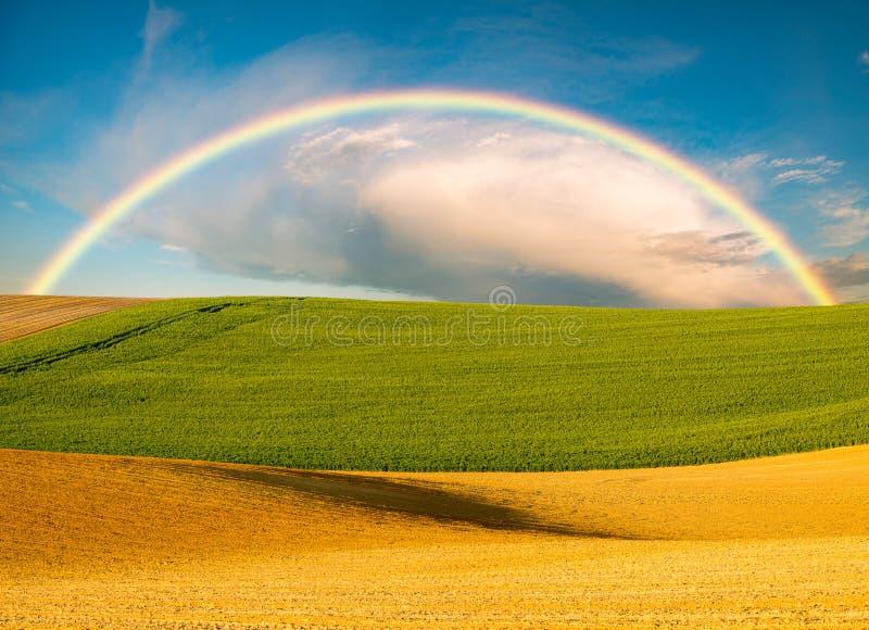 在春天领域的彩虹 库存图片