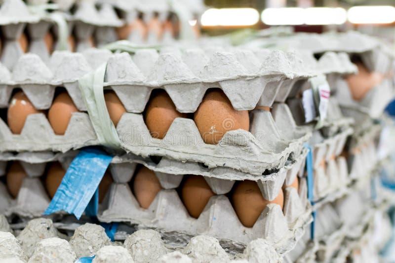 在显示器的很多鸡蛋待售在地方新鲜食品市场,热带巴厘岛,印度尼西亚上 免版税库存照片