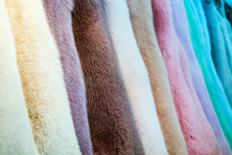 在显示在商店,工作室的不同颜色毛皮 免版税库存照片