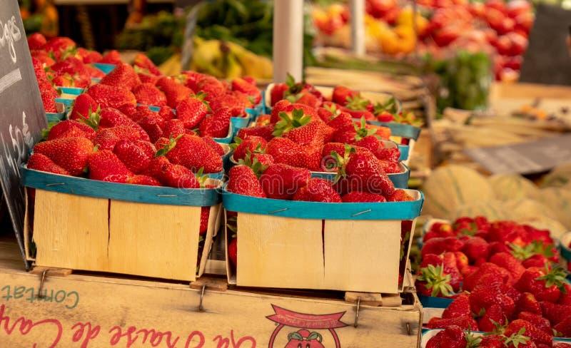 在显示的新鲜农产品在一个地方农夫市场上在Uzes镇  免版税库存图片