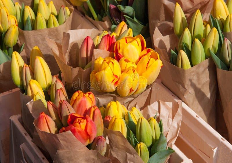 在显示的黄色和橙色郁金香在农夫市场上在3月 免版税库存照片