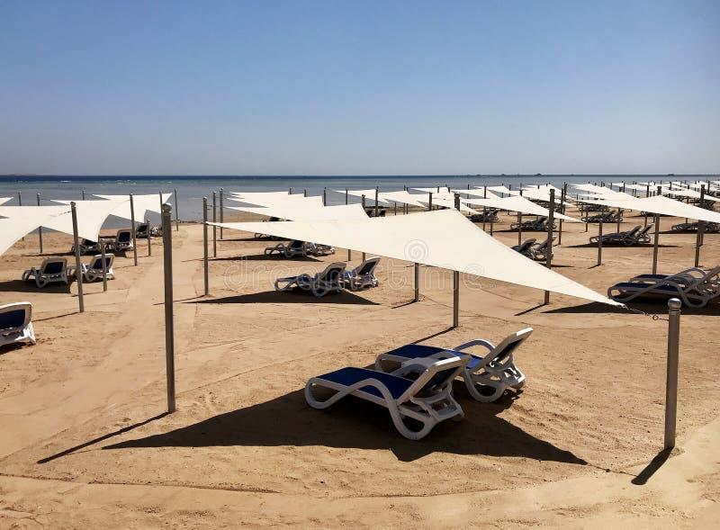 在晒黑的黄沙的时髦的懒人sunbed在海滩在夏天在露天下 库存图片