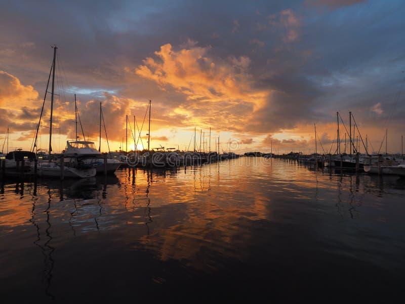 在晚餐钥匙小游艇船坞的日出在椰子树丛,迈阿密,佛罗里达里 免版税图库摄影