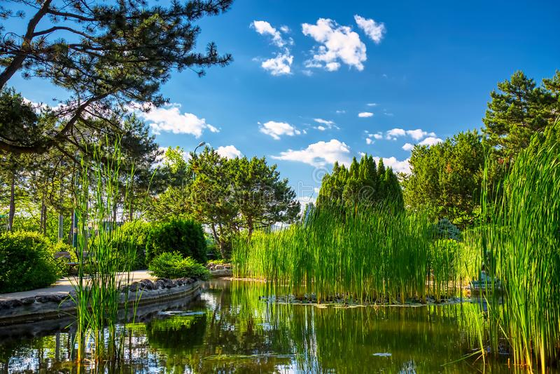 在晴朗的夏日期间,位于布达佩斯,匈牙利马尔吉特海岛的日本庭院的图象  库存照片