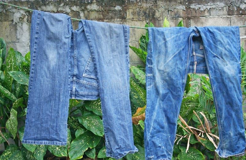 在晾衣绳的两条蓝色牛仔裤裤子 免版税库存照片