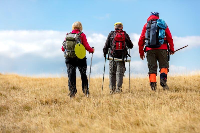 在暑假高涨期间,背面图射击了年轻朋友在乡下 走在自然的小组远足者 库存照片
