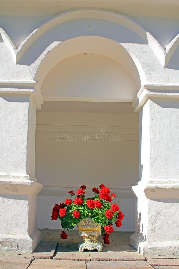在曲拱下的盆的大竺葵 免版税库存照片