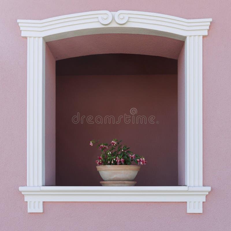 在曲拱窗口的花 免版税库存图片