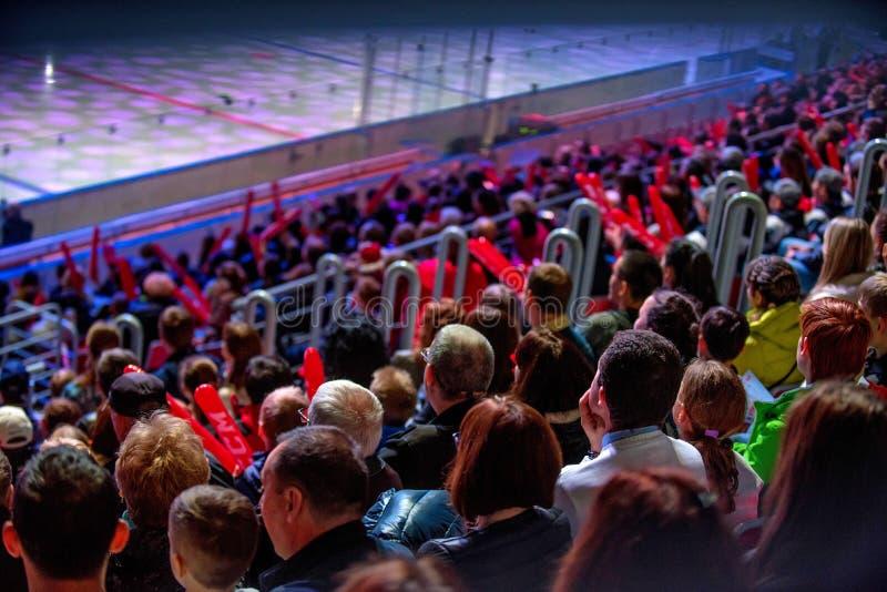 在曲棍球比赛后面视图的Spetators 免版税库存图片
