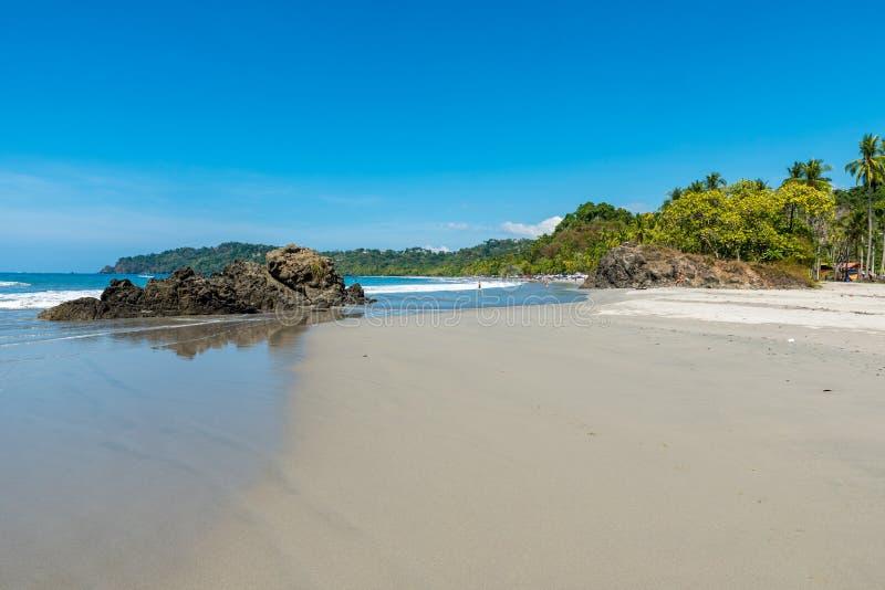 在曼努埃尔・安东尼奥公园的Playa埃斯帕迪利亚-哥斯达黎加 免版税库存图片