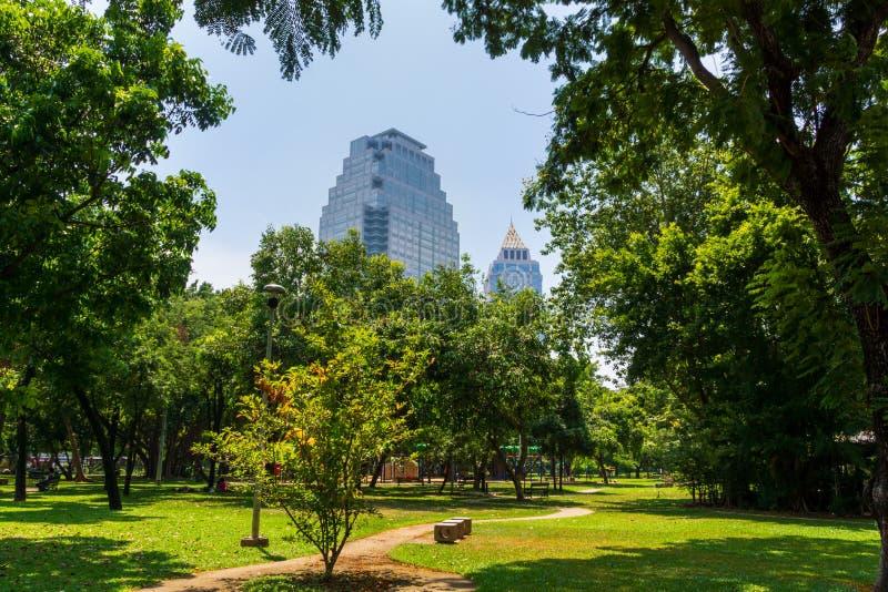 在曼谷摩天大楼的看法从Lumpini市公园,绿色绿洲在城市 免版税库存照片