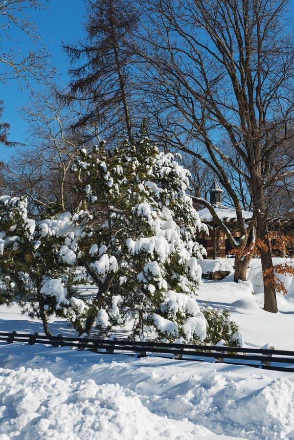 在最大的雪风暴以后的天在纽约 免版税库存图片