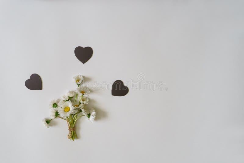 在最小的样式的夏天创造性的构成 白色延命菊d 库存图片