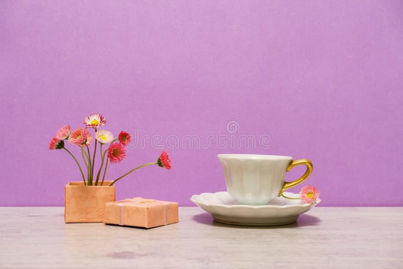 在最小的样式的夏天创造性的静物画 桃红色延命菊戴 库存图片