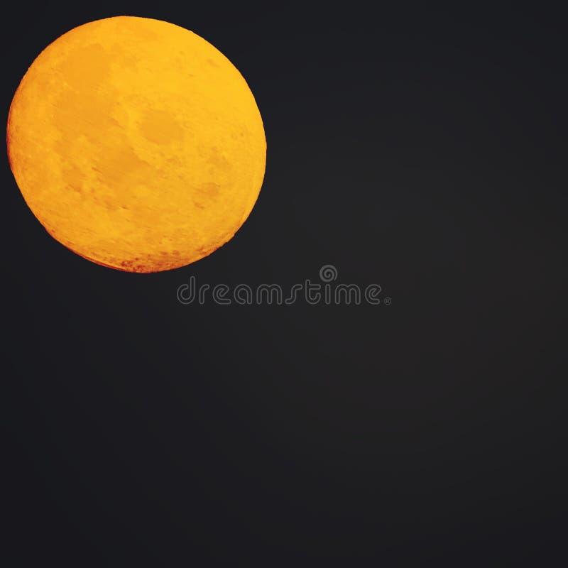在月亮下 图库摄影