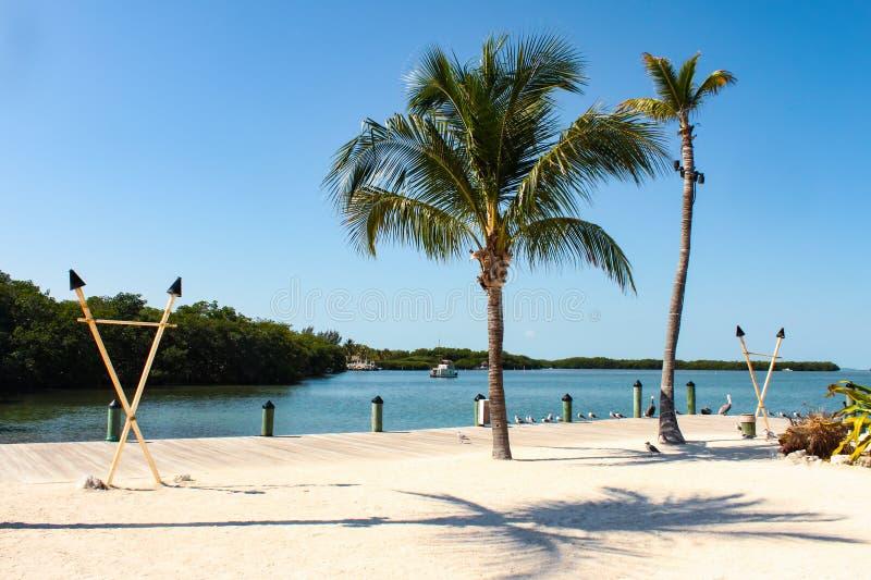 在有海鸟的佛罗里达群岛集会海滩和tiki火炬和棕榈树和小船附近在水中 库存图片