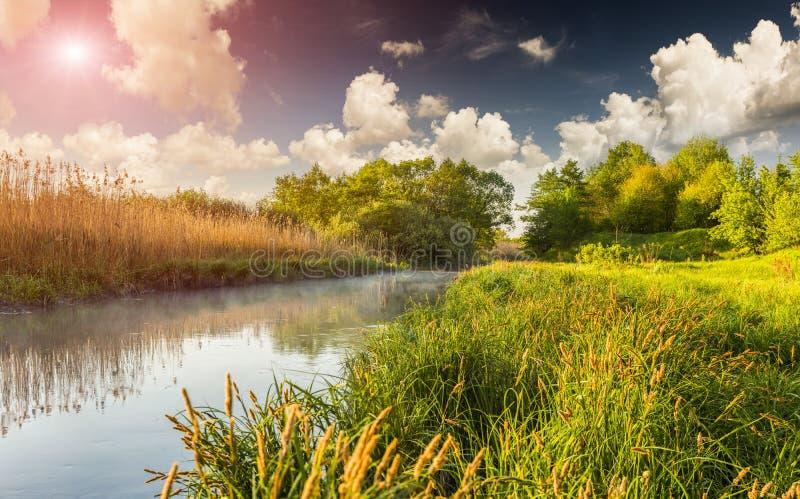 在有薄雾的河的五颜六色的春天风景 免版税库存照片