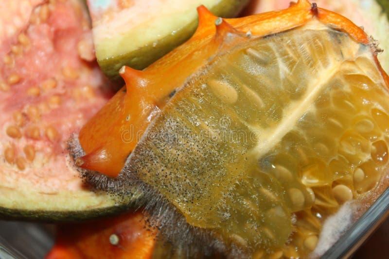 在有角的瓜或kiwano果子的模子 免版税库存图片