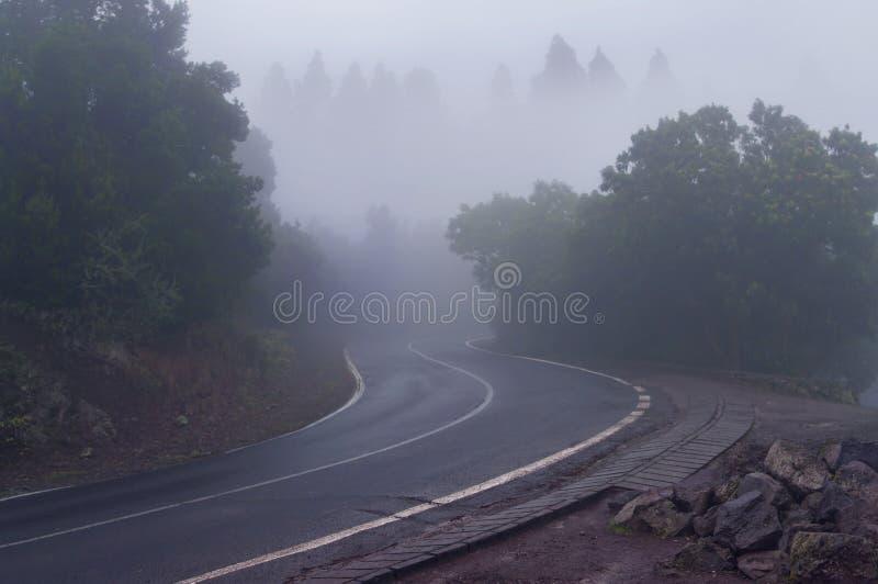 在有雾的天气的神奇山路 免版税库存图片