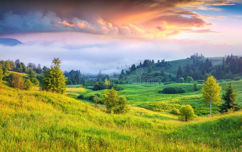 在有雾的山的五颜六色的夏天日出 免版税库存图片