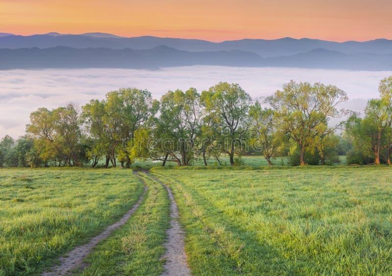 在有雾的山的五颜六色的春天早晨 免版税库存图片