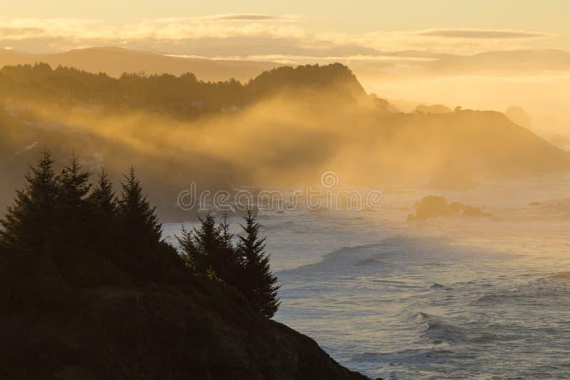 在有雾的日出期间的俄勒冈沿海视图 免版税库存照片