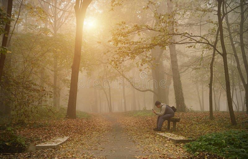 在有雾的森林里供以人员用途他的电话 免版税库存图片