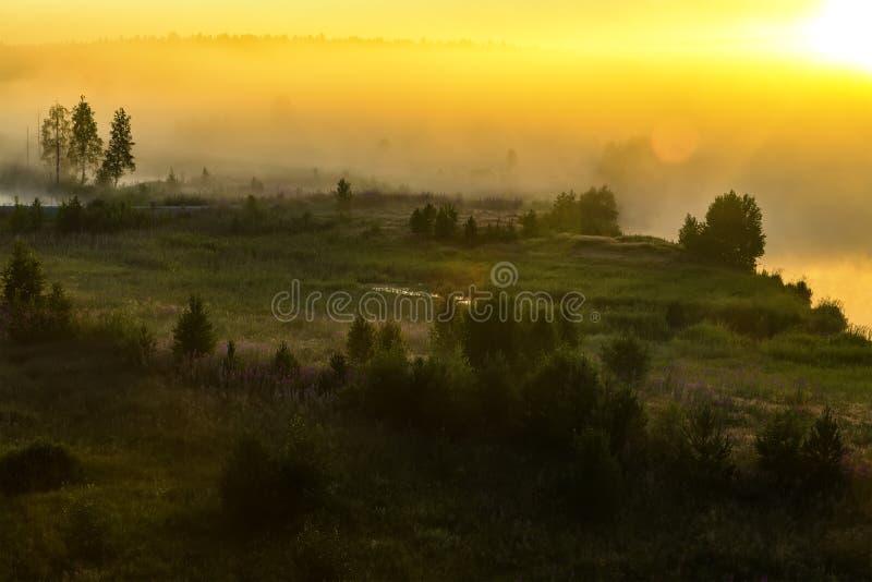 在有雾的河岸的日出 在河边鸟瞰图的雾 有薄雾的河在阳光下从上面 库存图片