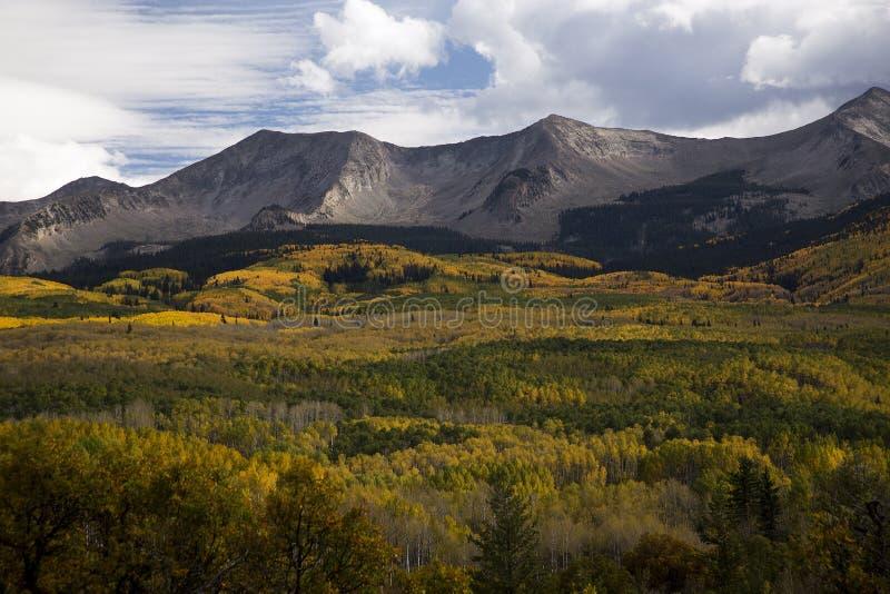 在有顶饰小山科罗拉多附近的秋天foilage在Kebler通行证Rd 免版税图库摄影