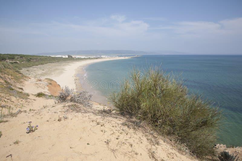 在有须的海滩在卡迪士,安大路西亚,西班牙 免版税图库摄影