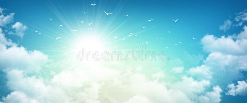 在朝阳的鸟飞行 皇族释放例证